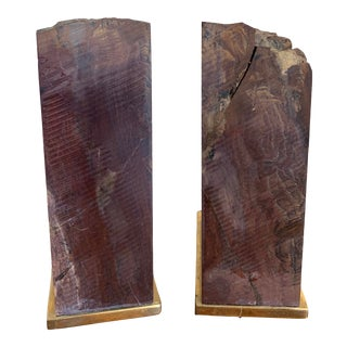 1970s Petrified Wood Bookends With Brass Mount - a Pair For Sale