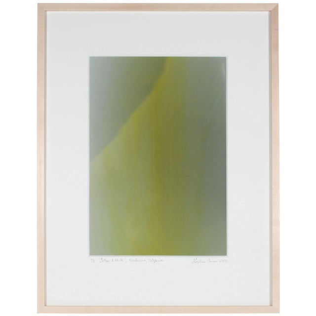 """Please allow at least 14 days for printing and framing before a piece is shipped. Entitled""""Yellow & White"""", this 2014..."""