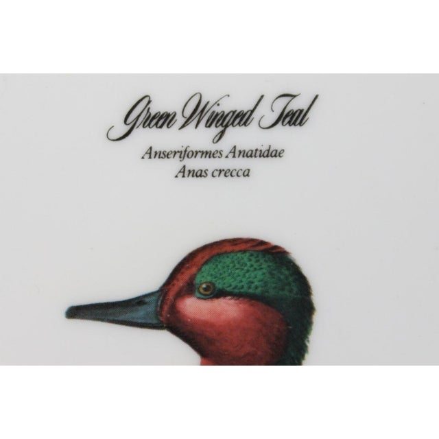 "Ceramic John James Audubon ""Green Winged Teal"" Coasters - Set of 4 For Sale - Image 7 of 7"