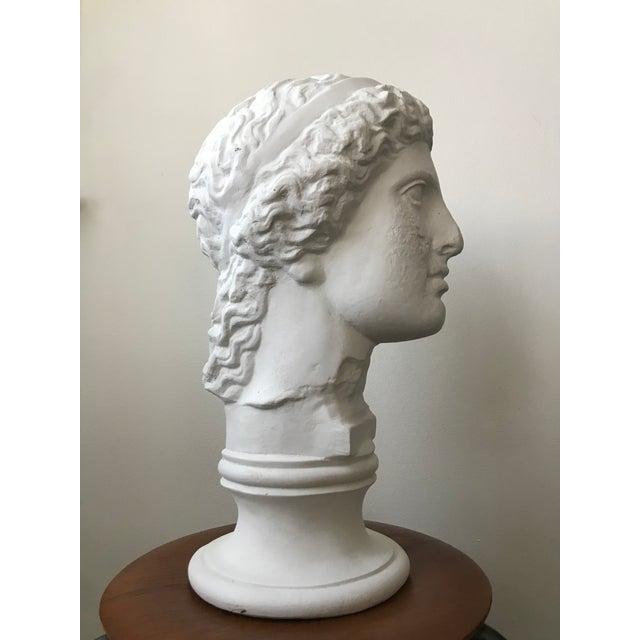 Vintage Plaster Female Bust For Sale - Image 4 of 11