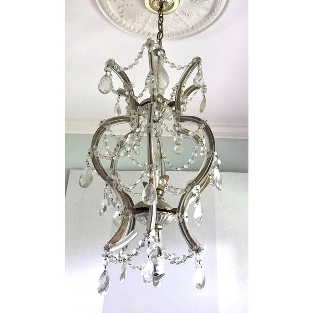 Silver Maria Theresa Crystal Chandelier Made in Italy For Sale - Image 8 of 8