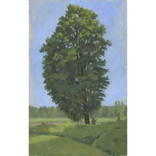 Maple Tree at Lucy Brook Farm: Original Oil Painting Plein Air Landscape For Sale