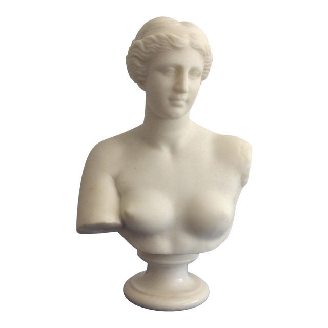19th Century Venus De Milo Marble Bust For Sale