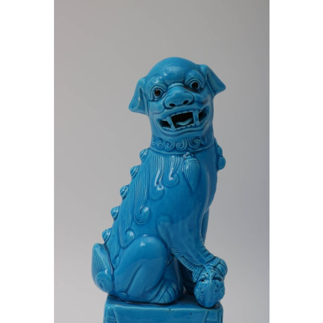 1920s 1920s Chinese, Glazed Peking Blue Foo Dogs - a Pair For Sale - Image 5 of 11
