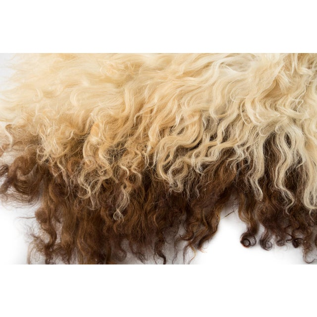 "Contemporary Long Soft Wool Sheepskin Pelt - 2'0""x3'2"" For Sale In Chicago - Image 6 of 7"