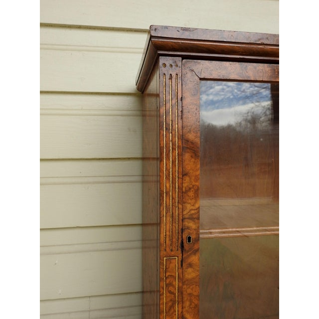 Circa 1880's burl walnut display cabinet. Small tabletop cabinet with carved and gilded highlights, single shelf. Brass...