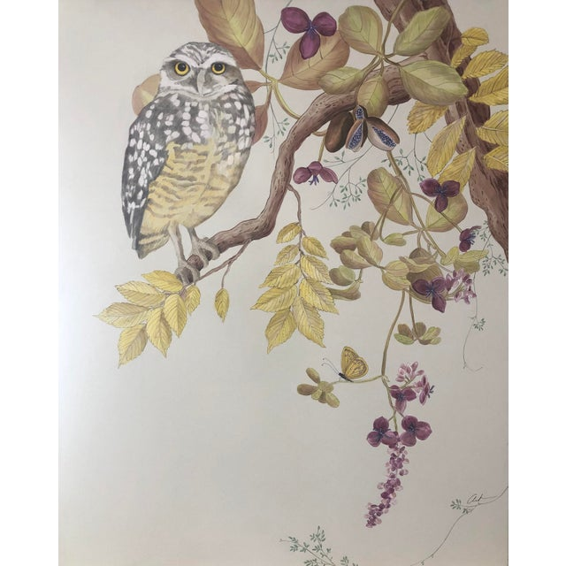 This wise owl sits proudly on tree branch which commingles with the chocolate vine also known as the three leaf akebia....