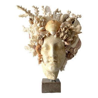 Large Shell Hygiea Bust For Sale