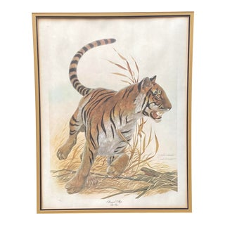 Signed John A. Ruthven Bengal Tiger Lithograph For Sale