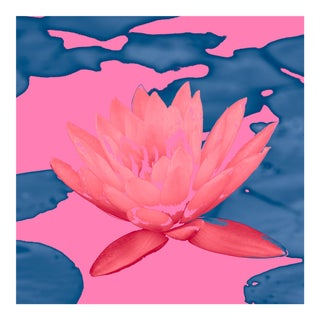 Lotus & Lilly Pads in Pink & Blue