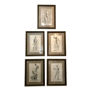 """""""Museum Florentinum"""" Copperplate Engravings - Set of 5 For Sale"""