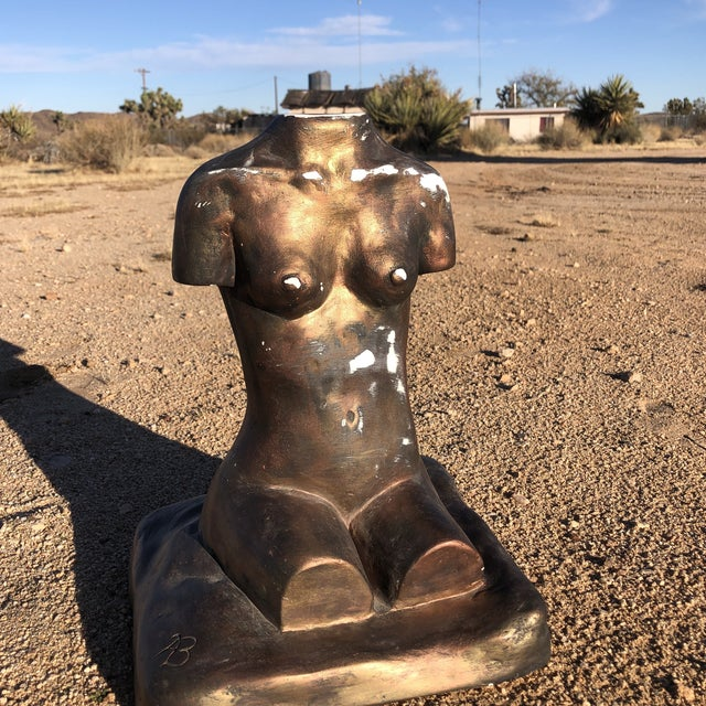 Really cool painted metallic bronzy/pink plaster torso. Looks like someone tried to remove paint and so there are a couple...