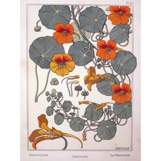 A Rare Set of 3 French Art Nouveau Chromolithographs of Nasturtiums & Sunflowers For Sale