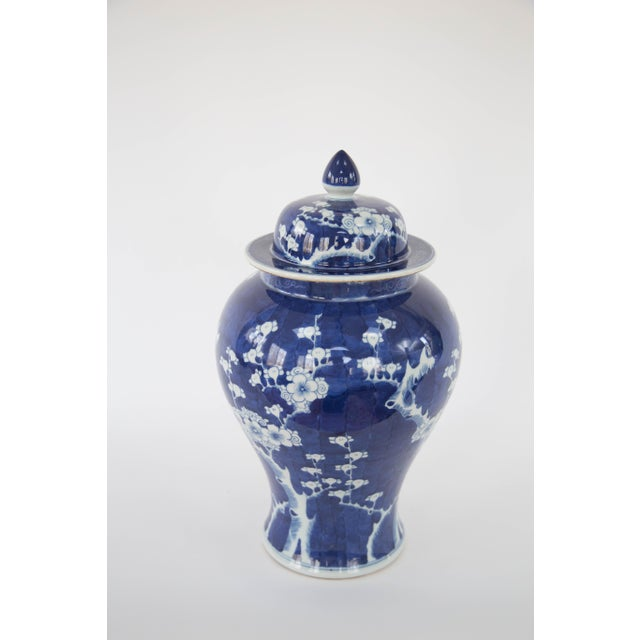 Blue & White Cherry Blossom Temple Jars - A Pair - Image 8 of 9