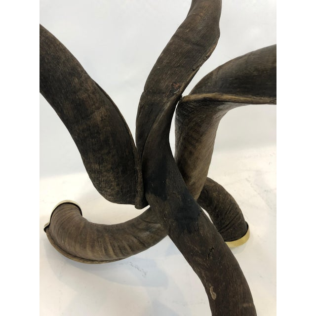 Glass Organic Handmade Kudo Horn Based Coffee Table For Sale - Image 7 of 12