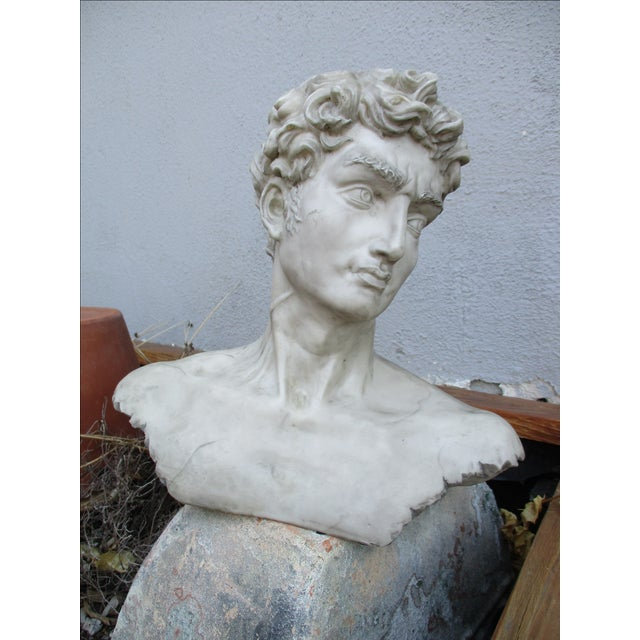 Neoclassical Vintage Cast Resin Bust - Image 11 of 11