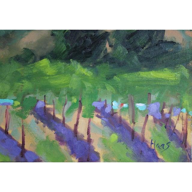 Original Oil Painting Landscape Plein Air, Sonoma Vines For Sale - Image 4 of 12