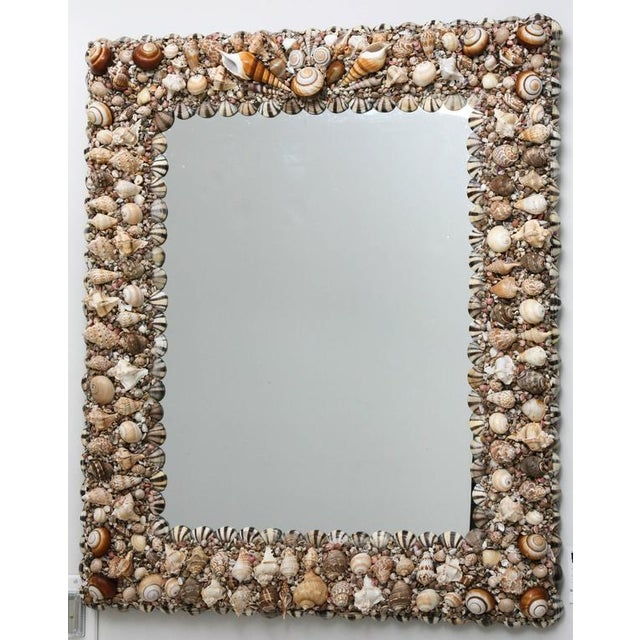 Hollywood Regency Hollywood Regency Shell Encrusted Wall Mirror For Sale - Image 3 of 10