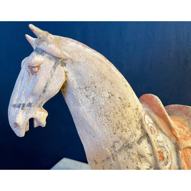 Antique Tang Pottery Horses - a Pair For Sale - Image 11 of 13