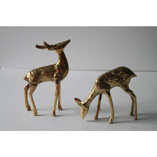 This is a beautiful and shiny vintage pair of brass deer.