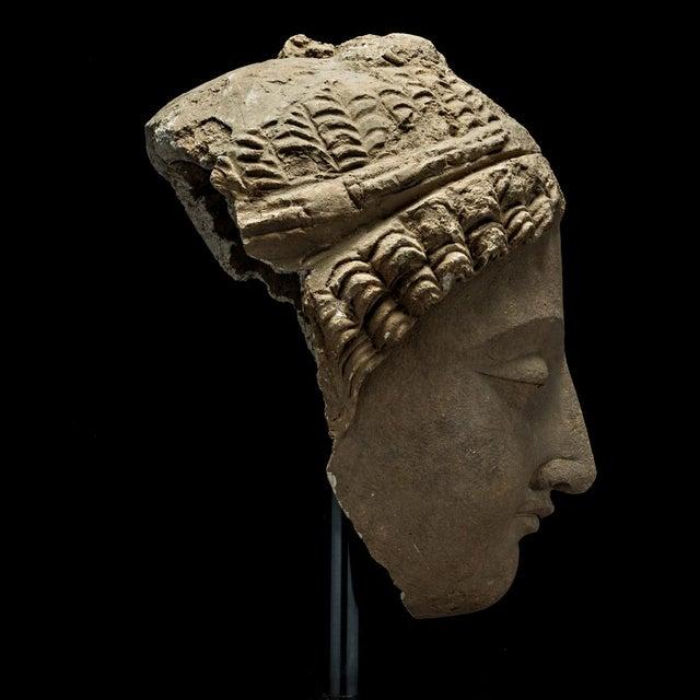 Gandharan Stucco Head of Buddha For Sale - Image 4 of 5