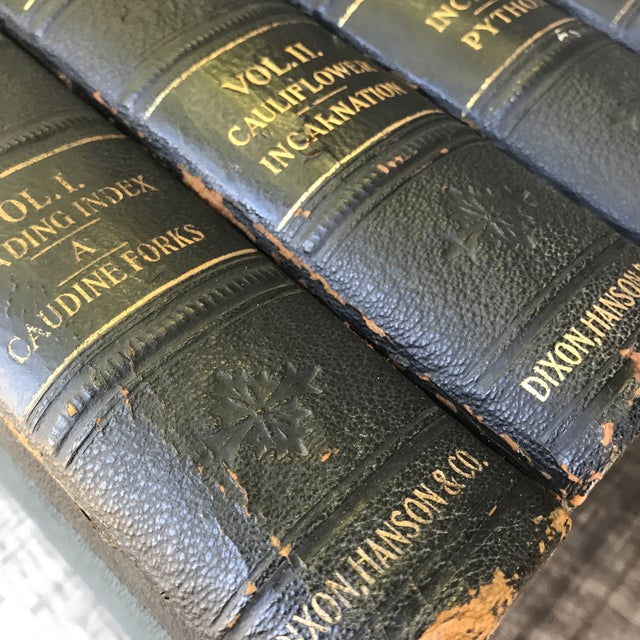 Antique Collection Hill's Practical Reference Library Books - Complete 4 Volumes For Sale - Image 11 of 12
