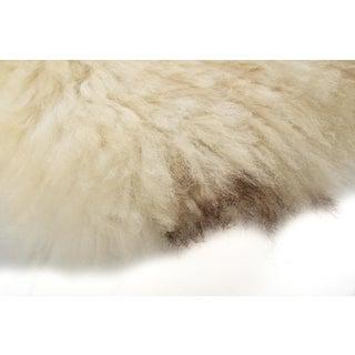 """Contemporary Long Wool Sheepskin Pelt/Handmade Rug - 2'0""""x3'0"""" Preview"""