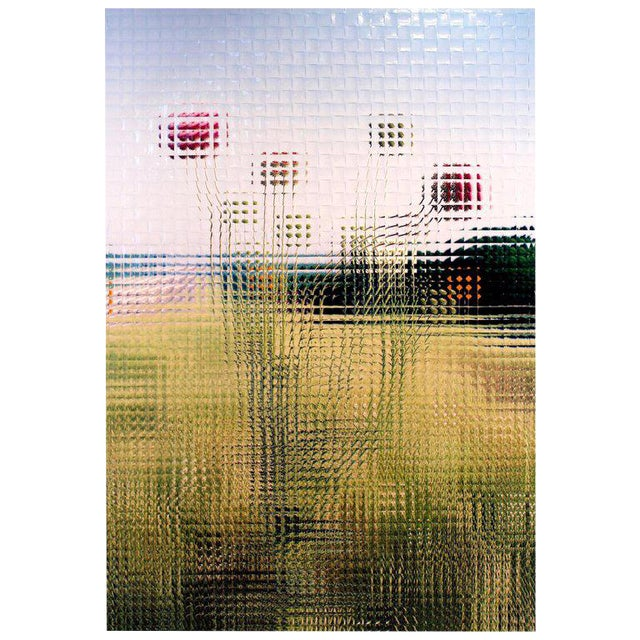 Rusty Scruby Photographic Reconstruction Titled Jim Miller Thistle, 2005 For Sale