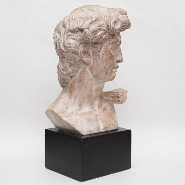 Tan Mid Century Ceramic Bust of David For Sale - Image 8 of 13