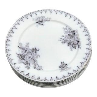 Antique Salad Plates - Set of 6