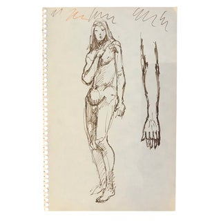 Standing Lanky Male Nude Drawing 1960s For Sale
