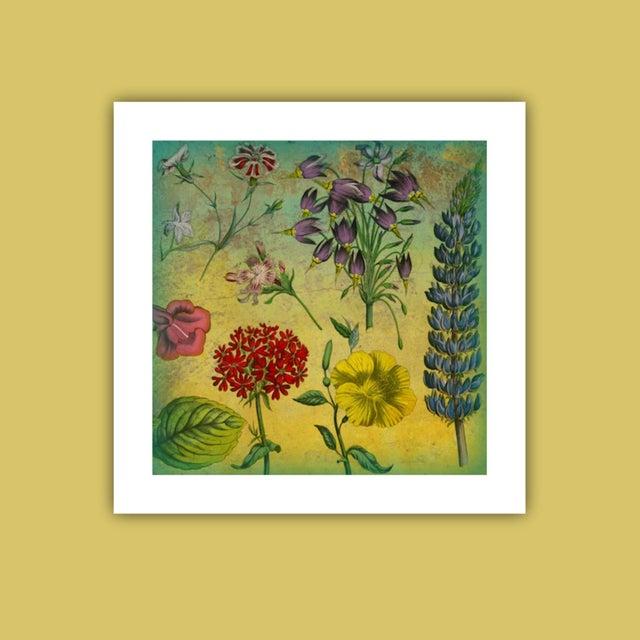 Garden Botanical Archival Print - Image 3 of 3