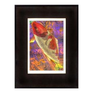 Koi Fish Print 1991 Framed & Signed For Sale