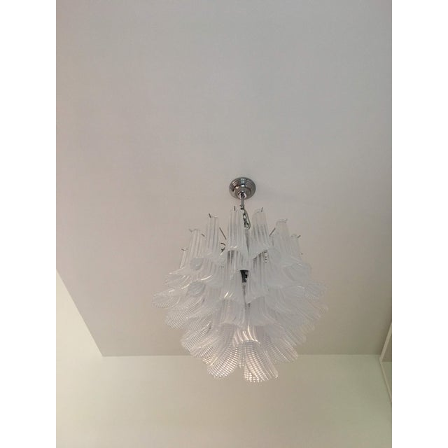 "Contemporary Modern Murano Glass ""Selle"" Sputnik Chandelier For Sale - Image 3 of 11"