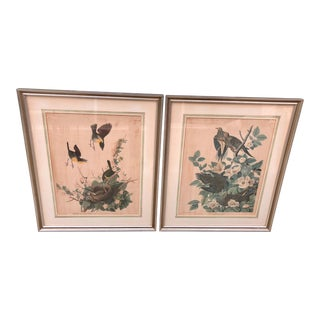 1950s Vintage Audubon Bird Framed Prints - A Pair