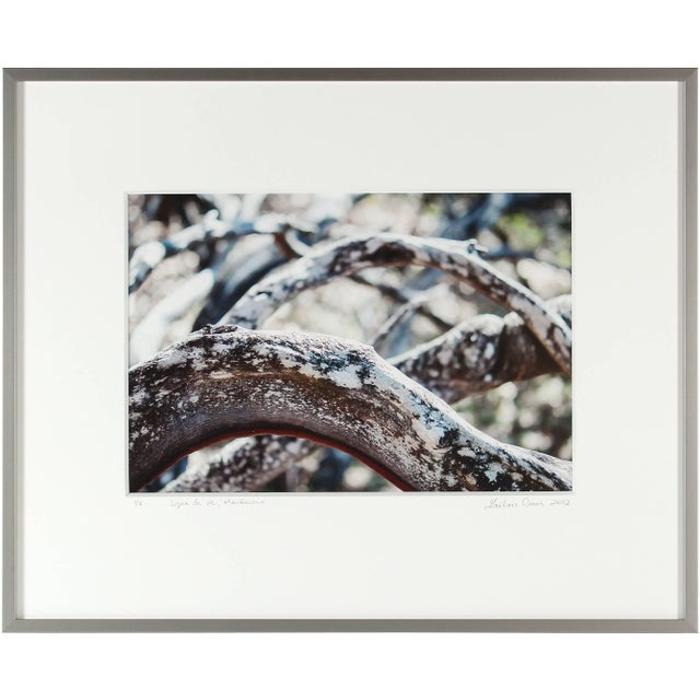 "Please allow at least 14 days for printing and framing before a piece is shipped. Entitled ""Ligne de vie"", this 2012..."