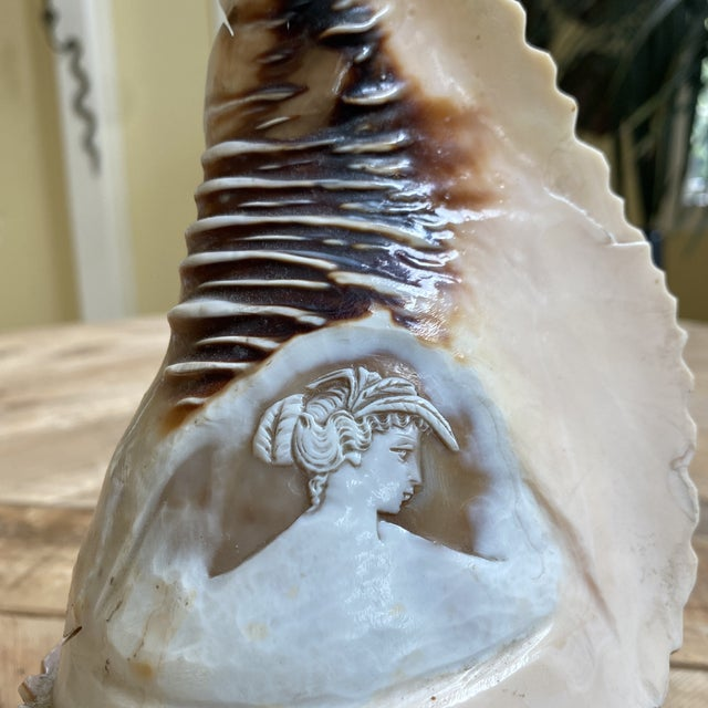 19th Century Antique Carved Cameo Conch Shell on Stand For Sale - Image 5 of 8