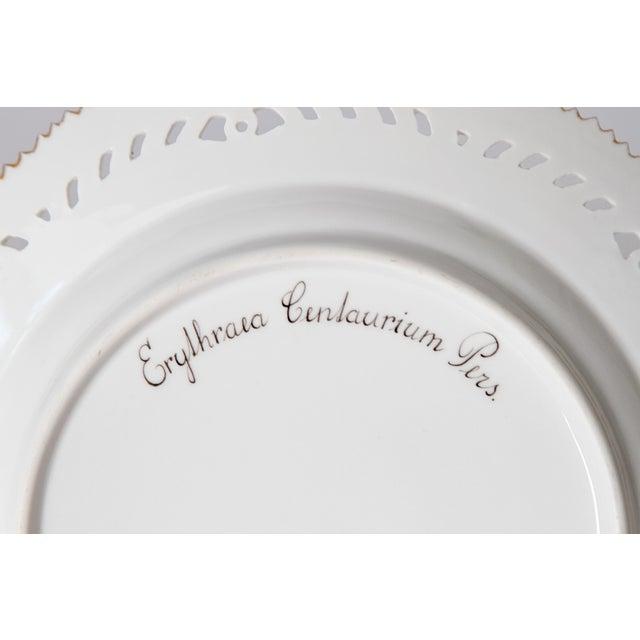 Neoclassical Royal Copenhagen Flora Danica Pierced Plates #20/3554 For Sale - Image 3 of 13