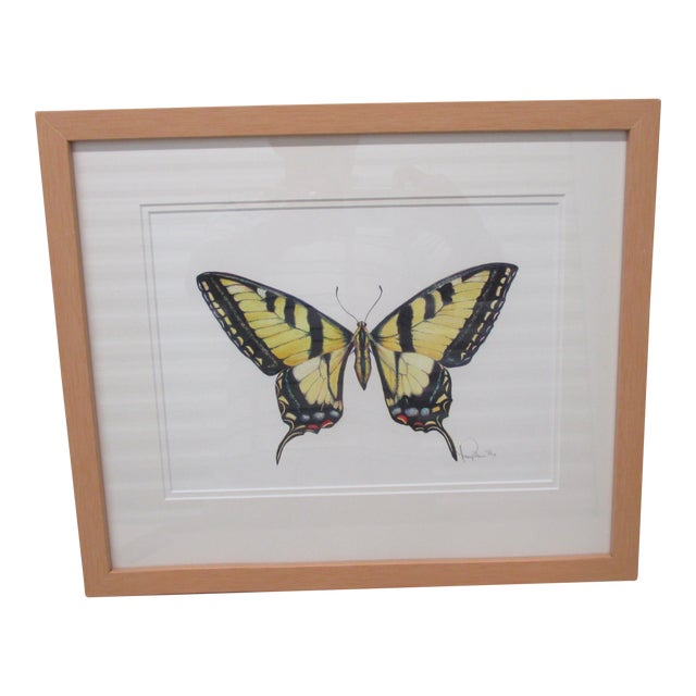 Western Tiger Swallowtail Butterfly Watercolor by Mary Ann Ho For Sale