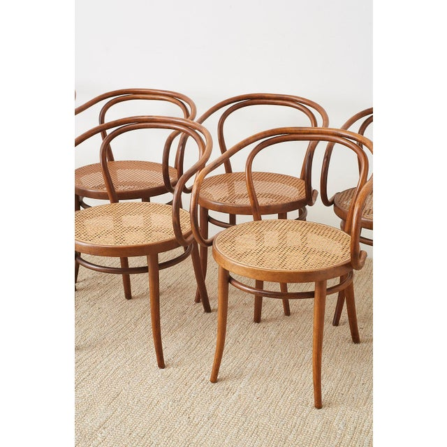Thonet 209 Bentwood Cane Armchairs - Set of 8 For Sale - Image 10 of 13