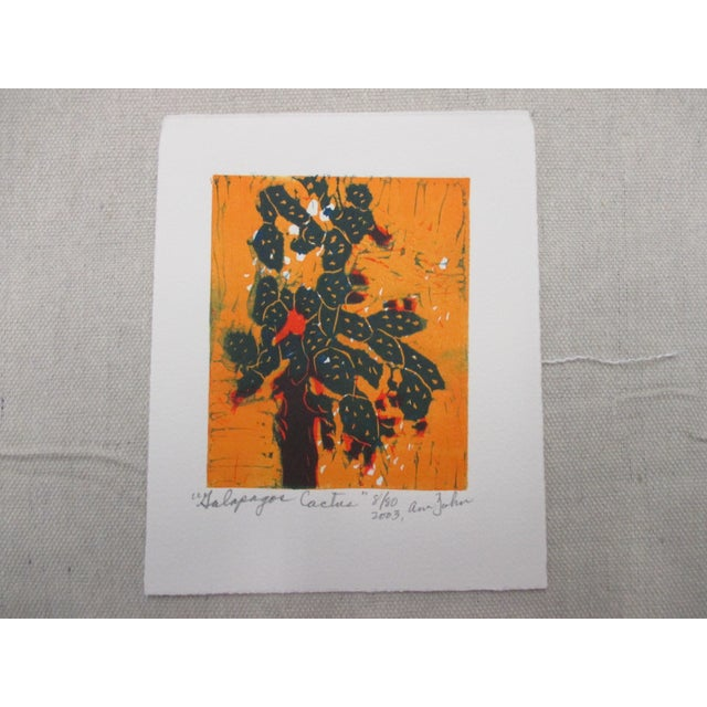 2000 - 2009 Vintage Lithograph From the Galapagos Collection by Ann Zahn: Cactus For Sale - Image 5 of 5