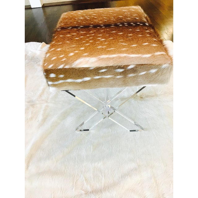 Axis Deer Lucite X Stool - Image 4 of 7
