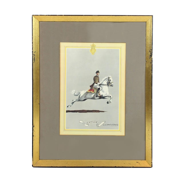 """1960s English Traditional Equestrian """"Capriole"""" Print For Sale"""