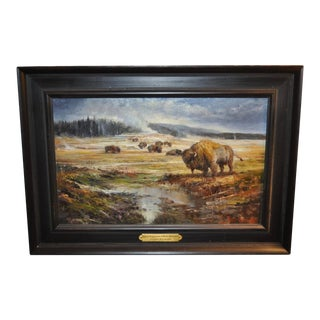"""Stefan Baumann """"Equinox Congregation of Bison"""" Yellowstone, National Park Oil Painting For Sale"""