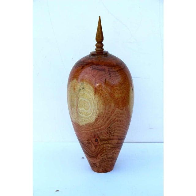 Stunning Hand-Turned Honey Locust Vase by John Mascoll For Sale In Palm Springs - Image 6 of 6