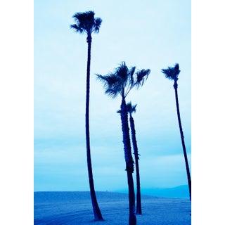 """Venice Beach Blue Palmtrees II"" Contemporary Beach Landscape Photograph For Sale"