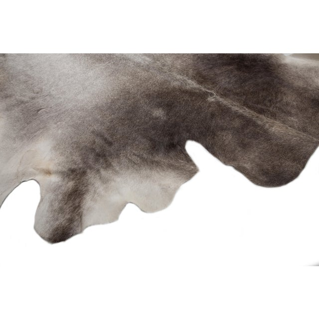 """Gray Authentic Rare Aydin Cowhide Rug, Gray, Handmade in Europe - 6'0""""x7'0"""" For Sale - Image 8 of 11"""