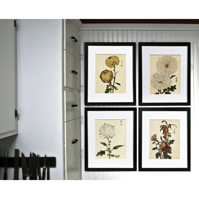 "Chrysanthemum Giclée Print Titled ""Soulful"" - Image 3 of 3"