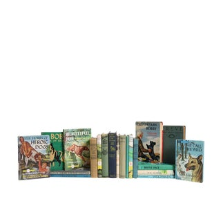 Dog Stories for Kids : Set of Twenty Decorative Books