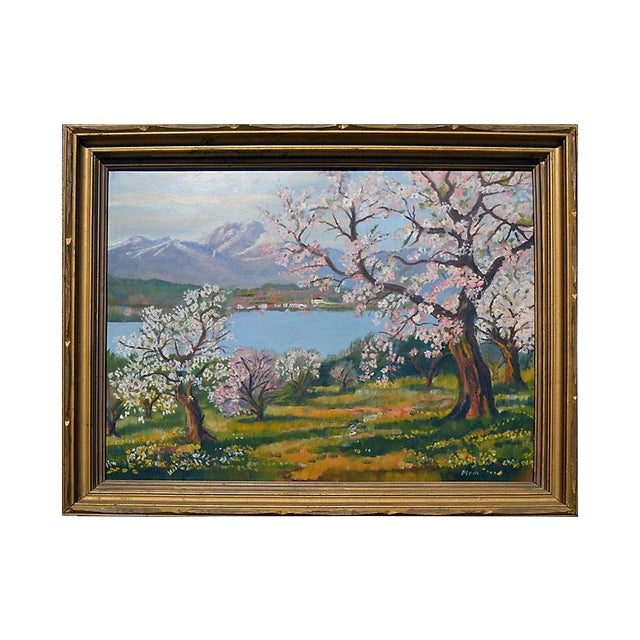 Apple Trees in Bloom For Sale